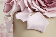 Meg's Wedding Ideas / by Sharon Pind