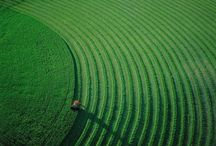 Aerial art / by Ellen King