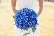 Wedding Stuff / by Lelia Anne