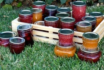 Recipes-Canning & Preserving / by Theresa Pearson-Ontiveros