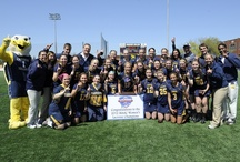 2012 Women's Lacrosse MAAC Championship / by Canisius Athletics