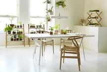 Inspiraatio: Kekkilä / Täällä inspiroidumme Kekkilästä. Löydät Kekkilä-tuotteita tavarataloistamme ja verkkokaupastamme.  / by Kodin Ykkönen