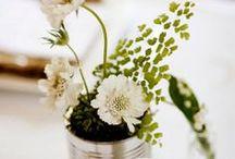 Kukka- ja kasvi-ideoita kotiin / Täällä jaamme meiltä ja muualta inspiraatiota ja ideoita kukilla ja kasveilla sisustamiseen. Löydät valikoimastamme runsaasti erilaisia maljakoita, ruukkuja, astioita ja koreja ideoiden toteuttamiseen, tuoreita kukkia unohtamatta. / by Kodin Ykkönen