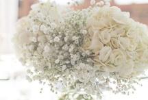 flower arrangements / by Nanette Linder