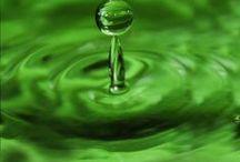 Green, Green, Green / by Sharon Bush