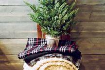 christmas / by Katelyn Miller
