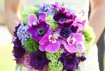 Bridal Bouquets - Dark and Bold / by Bergerons Flowers