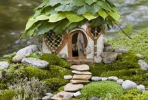 Fairy gardens / by Jan Campsall