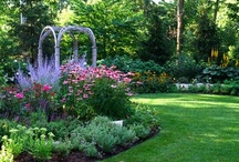 "My Kind of Garden!! / To quote my son when he was 8 or 9...""Flowers and Happy Crap"". / by Donna Huenefeld"