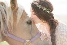 Dogs& Cats & Horses  in Weddings / These are some of my favorite pictures of dogs, cats and horses in weddings / by LaGartierWeddingGarters