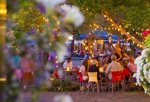 Dining in Aspen / Aspen's restaurants offer a range of options for the epicurean. There's a restaurant for every culinary craving. / by Aspen Colorado