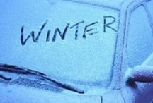 Winter Wonderland / by Shauna Biggs