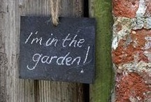 """In The Garden / """"Always remember the beauty of the garden, for there is Peace."""" -unknown / by Give Me Ireland Dreams"""