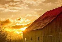 barns / by Robin Sturman Fisher Cogar