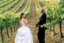 ♥ Vineyards & Wineries | Jevel Wedding Planning ♥ / Vineyards & Wineries | Jevel Wedding Planning / by ♥ Jevel Wedding Planning | Jennifer E Wilson ♥