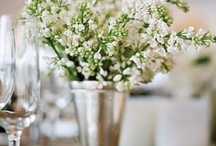 Home decor / Ideas and decorations for the house. / by Rebecca Triplett