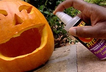 Holiday - Halloween / Recipes, Table settings, ideas, tips for a great holiday. / by Shirley Skiebe