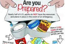 Emergency Preparedness / Planning for hurricanes, ice storms, etc.  / by Elaine Mazzo