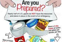 Emergency Preparedness / Planning for hurricanes, ice storms, etc.  / by Elaine Mazzo