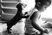Really Cute  / Really Cute stuff pinned on Pinterest / by David A