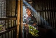 Agriculture | Farming / by ONE Girls and Women