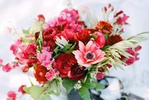 floral  / by park & grove | sarah tolboe