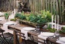 Weddings + Parties / Weddings, celebrations + gatherings / by Lily Ellis / Birch + Bird