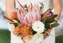 Flowers / Wedding Bouquets and Floral Arrangements / by Ruffled