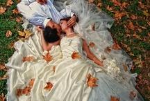 Wedding & Events / by Linda Morgan