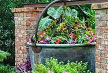 Garden / by Debbie Birchman