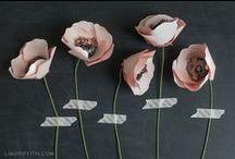 Gifts + DIY. / by Bonnie Chan