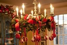 Festive Cheer / Holiday celebrations! / by Cyndee Gardner