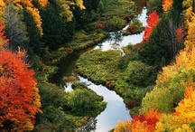 Favorite season...ahhhh AUTUMN / Ever since my first trip to New England, this has been my favorite season.  Warm colored leaves, the scent of pumpkin and spices, and my mind fills with wonderful memories of family and friends. / by Roberta Rainwater