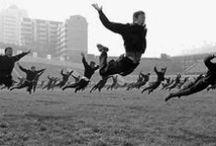 Catching Air / by PJ Andersen