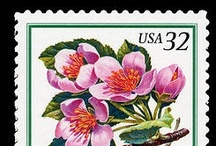 A Stamp Bouquet  / by National Postal Museum