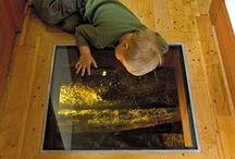 flooring / flooring / carpet / rugs / tile / by Lyndy