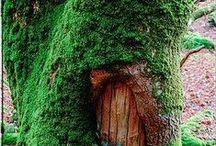 Fairy Houses, Furniture & Clothes / by Maryjo Medley