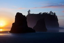 Olympic National Park / Travel Photos to Inspire Your Olympic National Park Vacation Planning! / by AllTrips - Vacation Packages & Travel