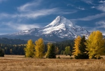 Mount Hood, Oregon / Travel Photos to Inspire Your Mount Hood & Hood River, Oregon Vacation Planning! / by AllTrips - Vacation Packages & Travel