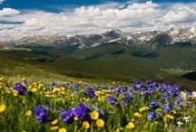 Breckenridge, Colorado / Travel Photos to Inspire Your Breckenridge, Colorado Vacation Planning! / by AllTrips - Vacation Packages & Travel