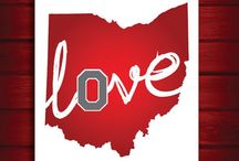 the silent call of buckeye love / by Amber Hoffman