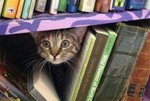 books oh how I love books / by Diane Hilton