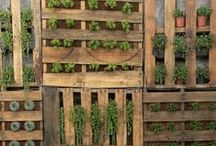 Pallet pallets / by Upcycle That