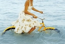 Bike / by Dee