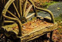 Bench / by Dee