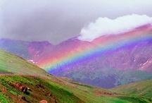 Laila's Rainbows / by Bonnie Amos