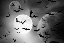 ALL HALLOW'S EVE / Halloween / by Crystal Stewart