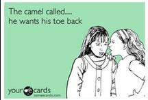 funny funny / by Lindsay Frye