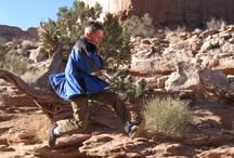 Favorite Kid-Friendly Hikes in Utah / by Ann Anderson