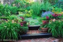 Gardens of Beauty / by Maureen Welch